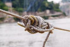 Μπλεγμένος ξέρτε στο σφιγγμένο σχοινί Στοκ Εικόνα