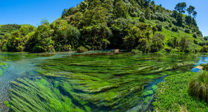 Μπλε άνοιξη που βρίσκεται στη διάβαση πεζών Te Waihou, Χάμιλτον Νέα Ζηλανδία Στοκ Εικόνες