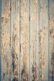 μπλε δάσος σύστασης Στοκ φωτογραφία με δικαίωμα ελεύθερης χρήσης