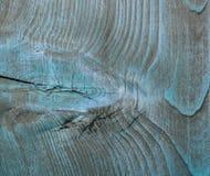 μπλε δάσος σύστασης Στοκ εικόνες με δικαίωμα ελεύθερης χρήσης