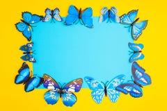 Μπλε έγγραφο στο κέντρο με την μπλε πεταλούδα στα κίτρινα WI υποβάθρου Στοκ φωτογραφία με δικαίωμα ελεύθερης χρήσης