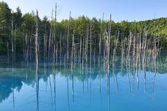 Μπλε λίμνη σε Biei, Hokkaido το καλοκαίρι Στοκ εικόνες με δικαίωμα ελεύθερης χρήσης