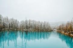 Μπλε λίμνη Biei στοκ φωτογραφία