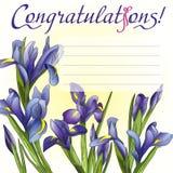 Μπλε ίριδες καρτών συγχαρητηρίων απεικόνιση αποθεμάτων