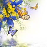 Μπλε ίριδες με τις κίτρινες μαργαρίτες Στοκ εικόνες με δικαίωμα ελεύθερης χρήσης