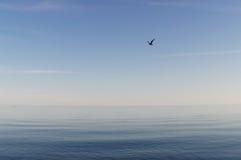 Μπλε απεραντοσύνη Στοκ φωτογραφία με δικαίωμα ελεύθερης χρήσης