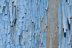 μπλε αποφλοίωση χρωμάτων από το ξύλο Στοκ Εικόνες