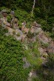 Μπλε απότομος βράχος βουνών κορυφογραμμών με τα τριαντάφυλλα Στοκ Φωτογραφία