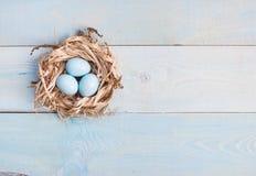 Μπλε αυγά Πάσχας στη φωλιά στο ξύλινο υπόβαθρο Στοκ Φωτογραφίες