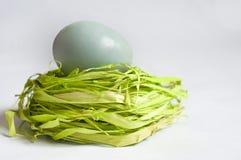 Μπλε αυγά Πάσχας στη χλόη Στοκ Εικόνα