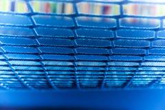 Μπλε αλιεία με δίχτυα Στοκ Εικόνες
