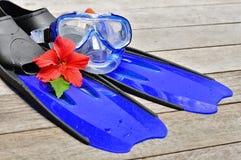 μπλε βατραχοπέδιλα στοκ εικόνα