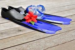 μπλε βατραχοπέδιλα στοκ φωτογραφίες με δικαίωμα ελεύθερης χρήσης