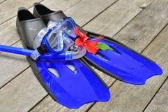 μπλε βατραχοπέδιλα στοκ εικόνα με δικαίωμα ελεύθερης χρήσης