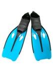 Μπλε βατραχοπέδιλο στοκ φωτογραφία με δικαίωμα ελεύθερης χρήσης