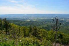 Μπλε βουνά κορυφογραμμών το καλοκαίρι Στοκ εικόνες με δικαίωμα ελεύθερης χρήσης