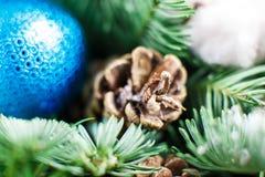 μπλε γυαλί σύνθεσης Χριστουγέννων μπιχλιμπιδιών κώνοι πεύκων και μπλε σφαίρες Στοκ Εικόνες