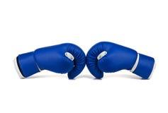 μπλε εγκιβωτίζοντας γάντια Στοκ εικόνα με δικαίωμα ελεύθερης χρήσης