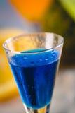 Μπλε εξωτικό ποτό στην παραλία με τους φοίνικες στο υπόβαθρο Στοκ Εικόνες