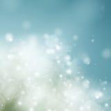 Μπλε εορταστικό υπόβαθρο κιρκιριών Στοκ φωτογραφία με δικαίωμα ελεύθερης χρήσης