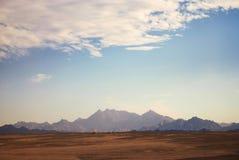 Μπλε ερήμων Στοκ Εικόνες