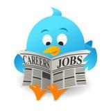 Μπλε εργασίες αναζήτησης πουλιών ελεύθερη απεικόνιση δικαιώματος