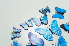 μπλε λευκό πεταλούδων ανασκόπησης Στοκ φωτογραφία με δικαίωμα ελεύθερης χρήσης