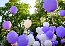 μπλε λευκό φεστιβάλ πόλεων μπαλονιών Στοκ φωτογραφία με δικαίωμα ελεύθερης χρήσης
