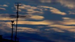 Μπλε ηλιοβασιλέματος κεραιών φιλμ μικρού μήκους