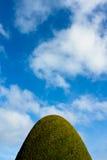 Μπλε θερινός ουρανός με ιουλιανό φρακτών συνδεδεμένος στοκ εικόνες