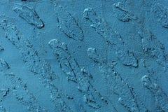 Μπλε διακοσμητικό επίστρωμα Στοκ Εικόνες