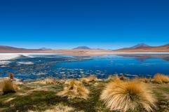 Μπλε λιμνοθάλασσα Altiplano Στοκ φωτογραφίες με δικαίωμα ελεύθερης χρήσης