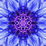 Μπλε κέντρο λουλουδιών Mandala Ομόκεντρο σχέδιο καλειδοσκόπιων Στοκ εικόνα με δικαίωμα ελεύθερης χρήσης