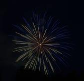 Μπλε-κίτρινος-πορτοκαλιά πυροτεχνήματα Στοκ Φωτογραφίες