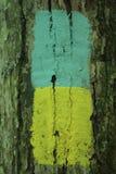 Μπλε και κίτρινος δείκτης στοκ φωτογραφία με δικαίωμα ελεύθερης χρήσης