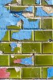 Μπλε και κόκκινη αποφλοίωση χρωμάτων από τα πράσινα κεραμικά κεραμίδια τοίχων Στοκ Φωτογραφίες