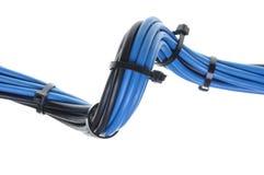 Μπλε και μαύρα ηλεκτρικά καλώδια με τους δεσμούς καλωδίων Στοκ Εικόνα
