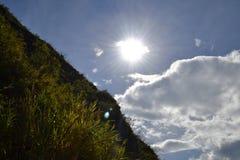 Μπλε και πράσινος Στοκ φωτογραφία με δικαίωμα ελεύθερης χρήσης