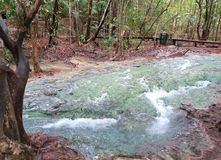 Μπλε και σαφής ποταμός στο δάσος στοκ εικόνες