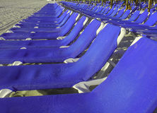 Μπλε καρέκλες στην παραλία σε μια σειρά Στοκ Εικόνα