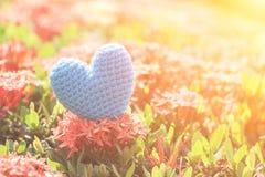 Μπλε καρδιά στο πράσινο δέντρο λουλουδιών ακίδων για την αγάπη και την ημέρα βαλεντίνων ` s Στοκ φωτογραφίες με δικαίωμα ελεύθερης χρήσης