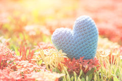 Μπλε καρδιά στο πράσινο δέντρο λουλουδιών ακίδων για την αγάπη και την ημέρα βαλεντίνων ` s Στοκ Εικόνες