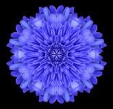 Μπλε καλειδοσκόπιο λουλουδιών Mandala που απομονώνεται στο Μαύρο Στοκ εικόνα με δικαίωμα ελεύθερης χρήσης