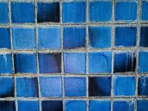μπλε κεραμίδι Στοκ Φωτογραφίες