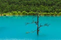 Μπλε κοιλάδα ή lanyuegu φεγγαριών Στοκ Εικόνες