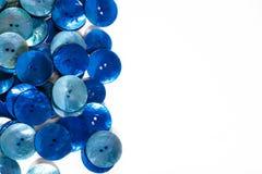 Μπλε κουμπιά Στοκ Φωτογραφία