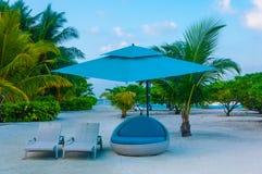 Μπλε κρεβάτι καναπέδων στην άμμο με τα κρεβάτια ήλιων - χαλαρώστε - πολυτέλεια Στοκ εικόνα με δικαίωμα ελεύθερης χρήσης