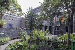 Μπλε Λα Casa Azul σπιτιών Kahlo Frida Στοκ Εικόνες