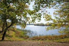 μπλε μακρύς ουρανός σκιών φύσης φθινοπώρου Στοκ φωτογραφία με δικαίωμα ελεύθερης χρήσης