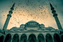 Μπλε μουσουλμανικό τέμενος ενάντια στο δραματικό ουρανό με τα πουλιά Στοκ Φωτογραφίες